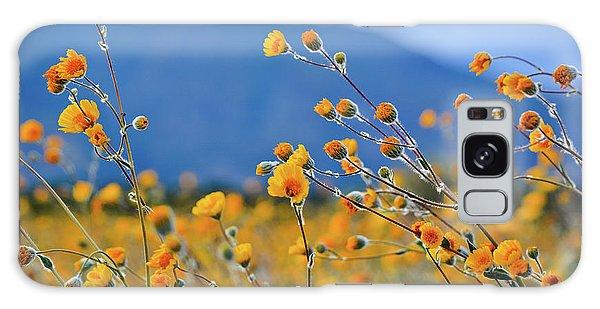 Anza Borrego Wild Desert Sunflowers Galaxy Case