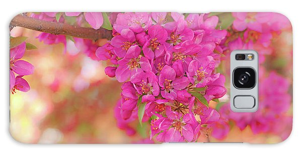 Apple Blossoms A Galaxy Case