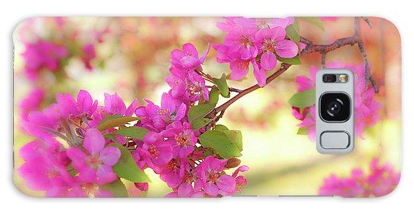 Apple Blossoms B Galaxy Case
