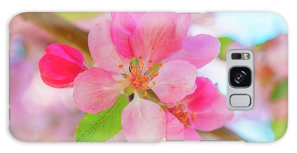 Apple Blossoms Red And Blue Galaxy Case