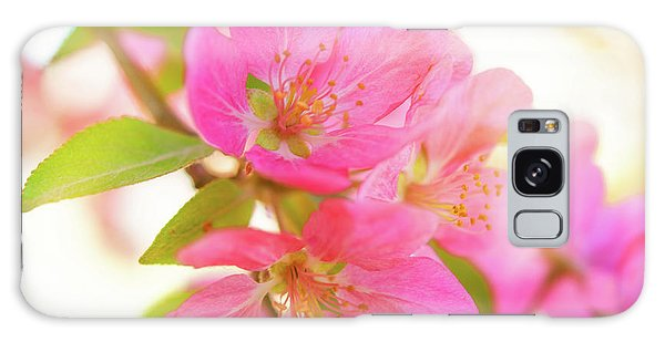 Apple Blossoms Warm Glow Galaxy Case