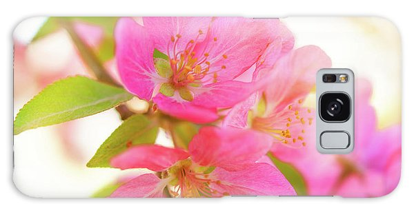 Apple Blossoms Warm Glow Galaxy Case
