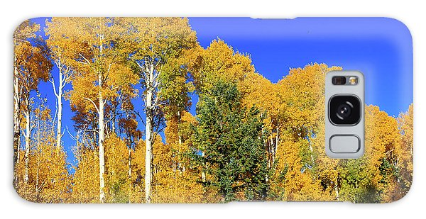 Arizona Aspens And Blowing Leaves Galaxy Case