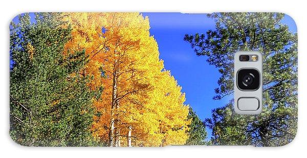Arizona Aspens In Fall 4 Galaxy Case