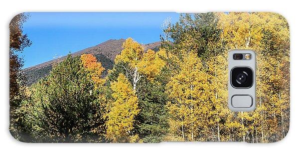 Arizona Aspens With Mountains Galaxy Case