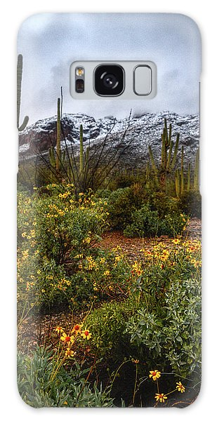 Arizona Flowers And Snow Galaxy Case