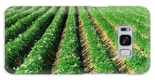 Aroostook County Galaxy Case - Aroostook County Potato Field by Vickie Ketch