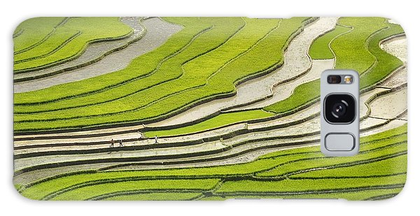 Asian Rice Field Galaxy Case