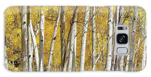 Aspen Autumn Galaxy Case
