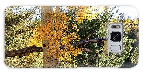 Aspen Tree Close Galaxy Case