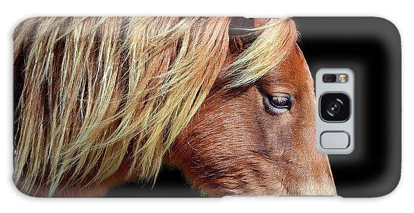 Assateague Pony Sarah's Sweet Tea Portrait On Black Galaxy Case