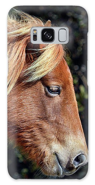 Galaxy Case featuring the photograph Assateague Pony Sarah's Sweet Tea Profile by Bill Swartwout Fine Art Photography