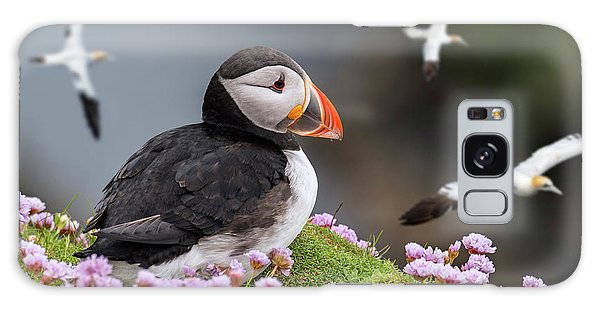 Atlantic Puffin And Soaring Gannets Galaxy Case