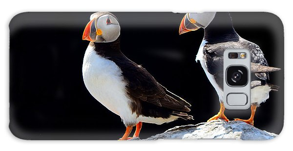 English Countryside Galaxy Case - Atlantic Puffins, Farne Islands Nature by Attila Jandi