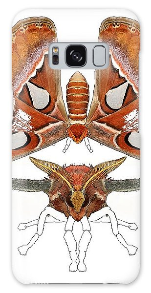 Galaxy Case - Atlas Moth4 by Joan Stratton