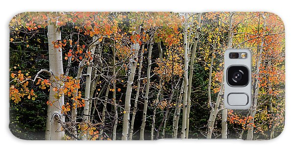 Galaxy Case featuring the photograph Autumn As The Seasons Change by James BO Insogna