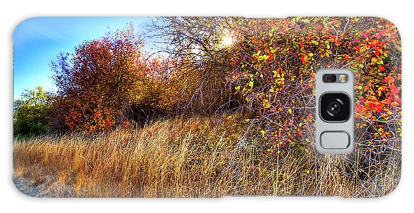 Galaxy Case featuring the photograph Autumn At Magpie Forest by David Patterson