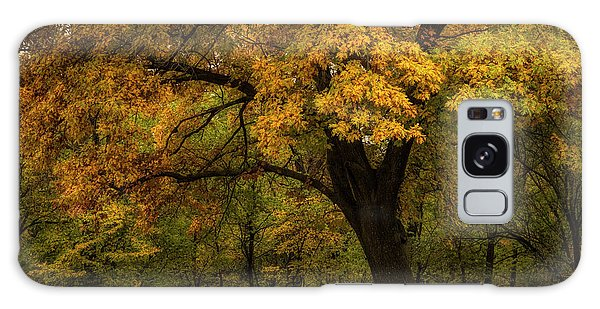 Galaxy Case featuring the photograph Autumn Beauty by Scott Bean