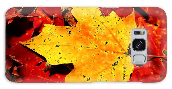 Autumn Beige Yellow Leaf On Red Leaves Galaxy Case