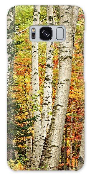 Autumn Birch Galaxy Case