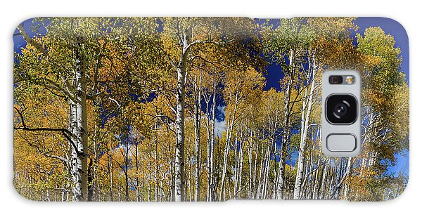 Galaxy Case featuring the photograph Autumn Blue Skies by James BO Insogna