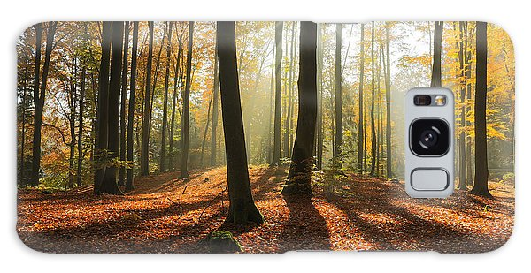 Pine Branch Galaxy Case - Autumn Forest In North Poland.pomerania by Mateusz Liberra