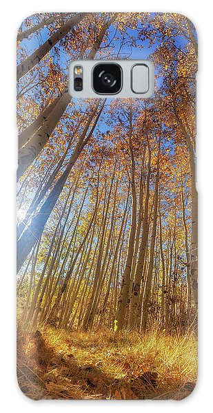 Galaxy Case featuring the photograph Autumn Giants by Tassanee Angiolillo