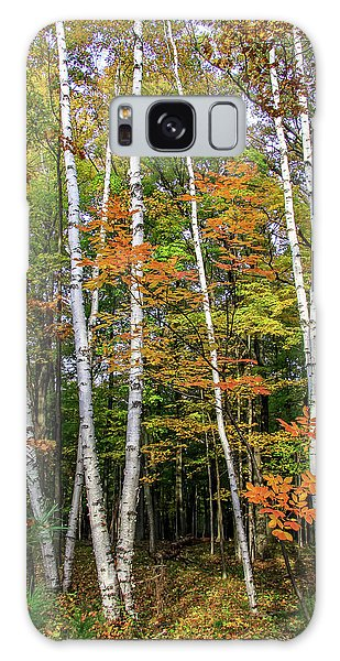 Autumn Grove, Vertical Galaxy Case
