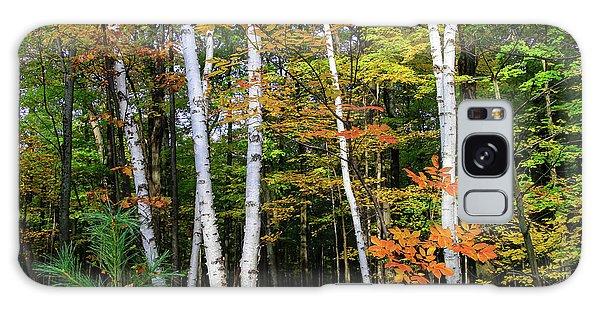 Autumn Grove, Wisconsin Galaxy Case