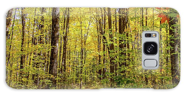 Autumn Hike Galaxy Case