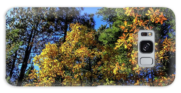 Autumn In Apache Sitgreaves National Forest, Arizona Galaxy Case