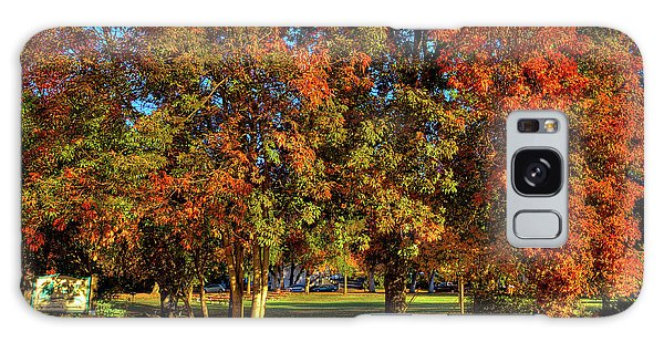 Galaxy Case featuring the photograph Autumn In Reaney Park by David Patterson