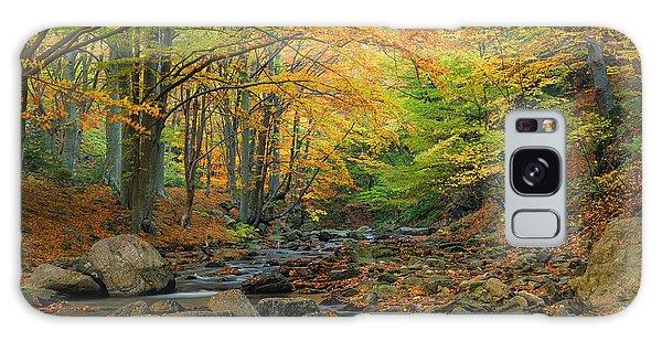 Autumn Landscape Galaxy Case
