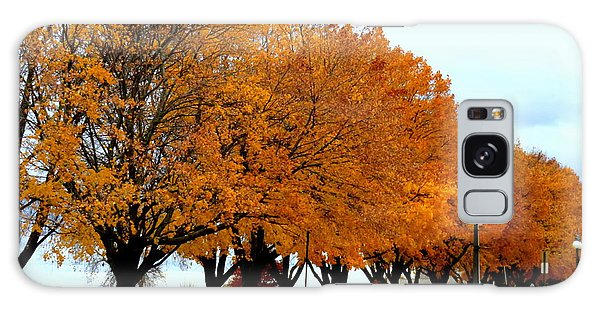 Autumn Leaves In Menominee Michigan Galaxy Case