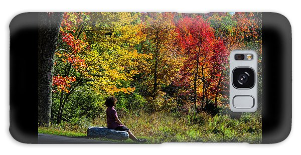 Autumn Leaves In The Catskill Mountains Galaxy Case