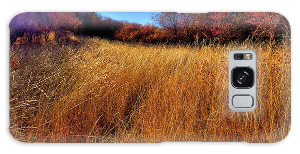 Galaxy Case featuring the photograph Autumn Path by David Patterson
