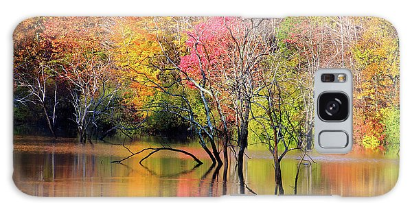 Galaxy Case featuring the photograph Autumn Reflections At Alum Creek by Angela Murdock