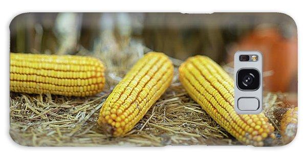 Indian Corn Galaxy Case - Autumn Scene Panorama by Steve Gadomski