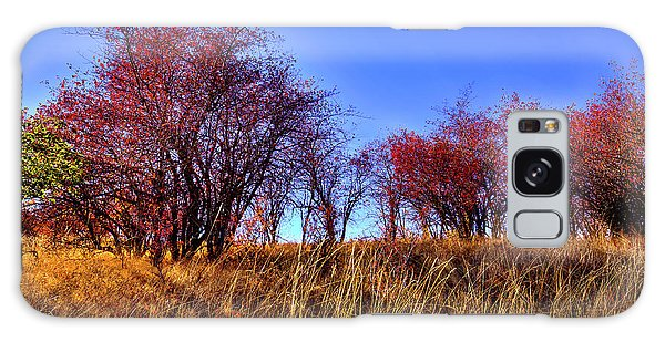 Galaxy Case featuring the photograph Autumn Sun by David Patterson