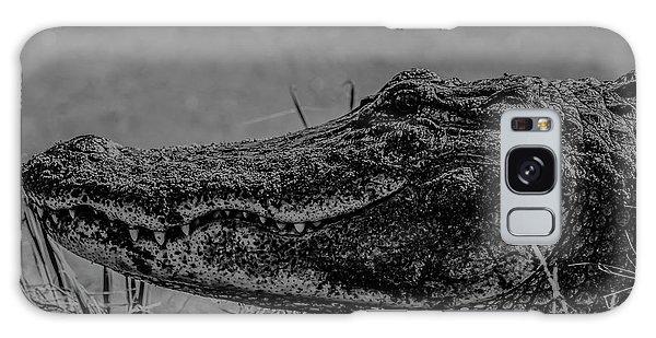 B And W Gator Galaxy Case