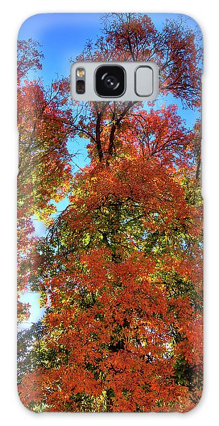 Galaxy Case featuring the photograph Backlit Autumn by David Patterson