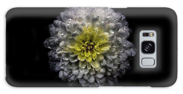 Backyard Flowers 46 Color Version Galaxy Case