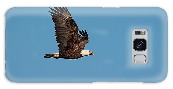 Bald Eagle Flyby Galaxy Case