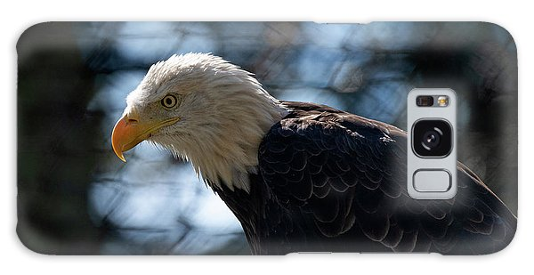 Bald Eagle Grandfather Mountain Galaxy Case