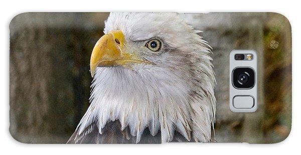 Bald Eagle Portrait Galaxy Case
