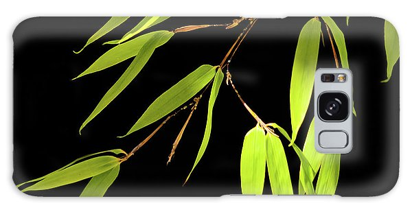 Bamboo Leaves 0580a Galaxy Case