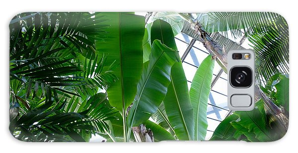 Banana Leaves In The Greenhouse Galaxy Case
