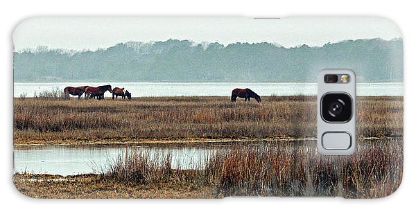 Galaxy Case featuring the photograph Band Of Wild Horses At Sinepuxent Bay by Bill Swartwout Fine Art Photography