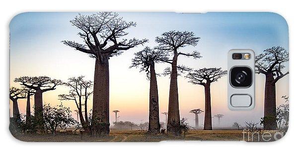 Dawn Galaxy Case - Baobab Alley At Dawn - Madagascar by Alex Ship