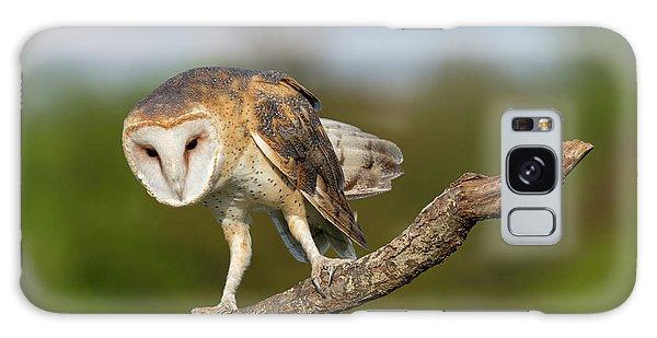 Barn Owl 5151801 Galaxy Case